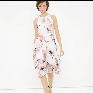 White House black market floral petite dress